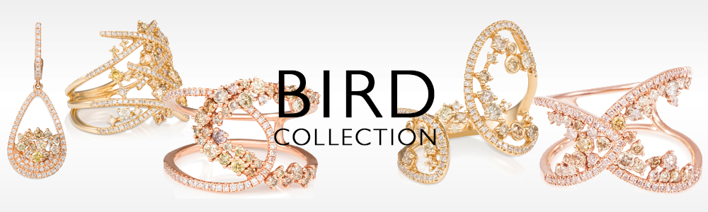 birdcollection